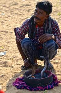 DSC_3244 snake charmer camel fair last day